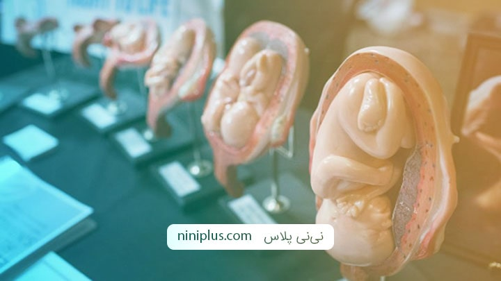 عوامل ایجاد کننده سقط جنین چیست و چه عوارض و خطراتی دارد؟