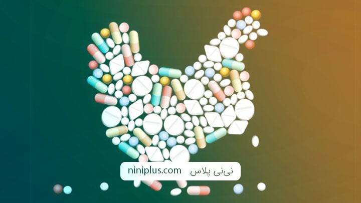 باقیمانده آنتی بیوتیک در گوشت مرغ در بارداری چه خطراتی دارد؟