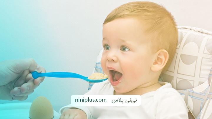 چند دسر خوشمزه برای شیرخواران و کودکان