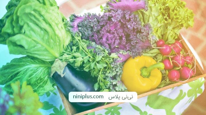 آیا بیزاری از سبزیجات در سه ماهه اول بارداری نرمال است؟