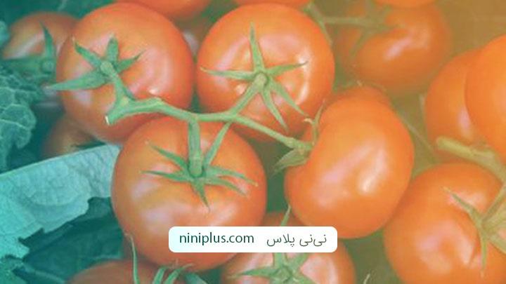 گوجه فرنگی خواص و فوایدی دارد؟