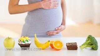 پانزده خوراکی برتر دوران بارداری نی نی پلاس