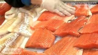 مصرف ماهی در بارداری مفید یا مضر؟ نی نی پلاس