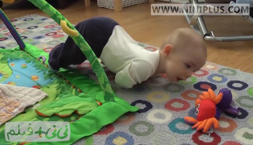 تلاش نوزادان برای چهار دست و پا رفتن