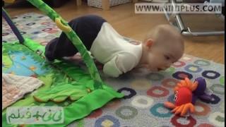 تلاش نوزادان برای چهار دست و پا رفتن نی نی پلاس
