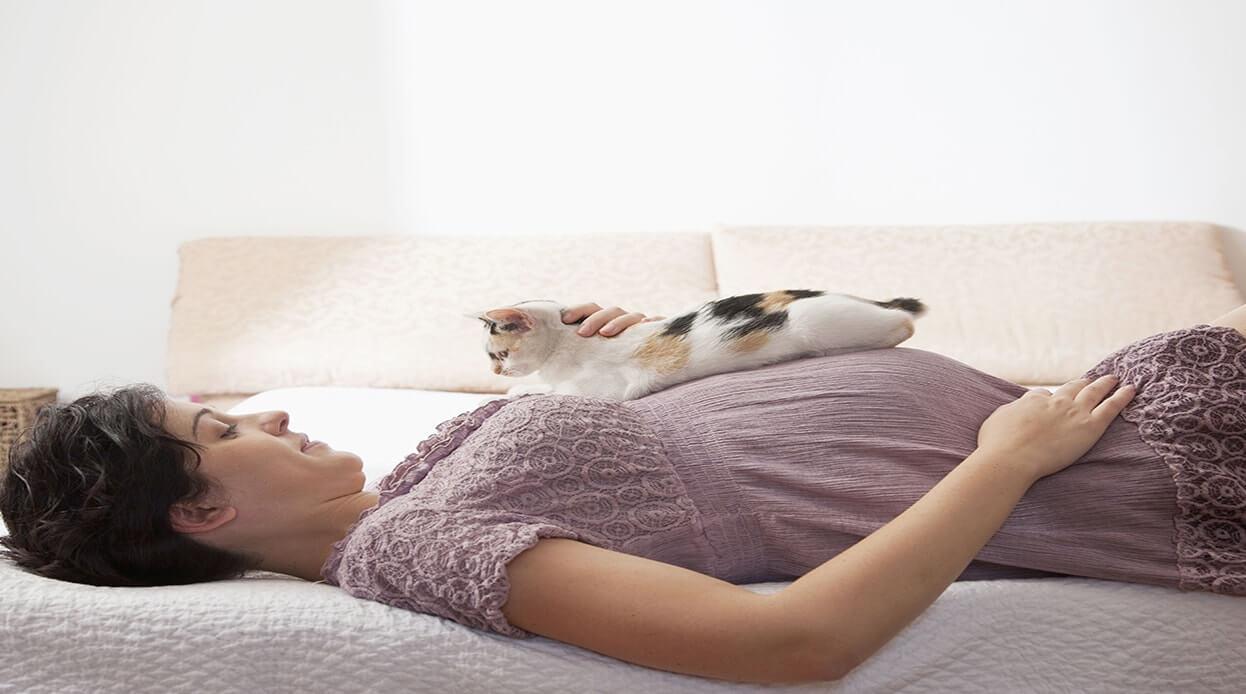 نگهداری از حیوانات خانگی در دوران بارداری