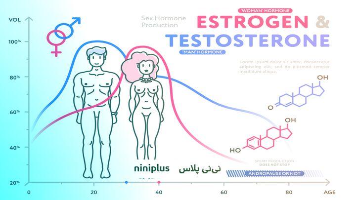 تاثیر هورمون تستوسترون در بارداری و میزان نرمال آن