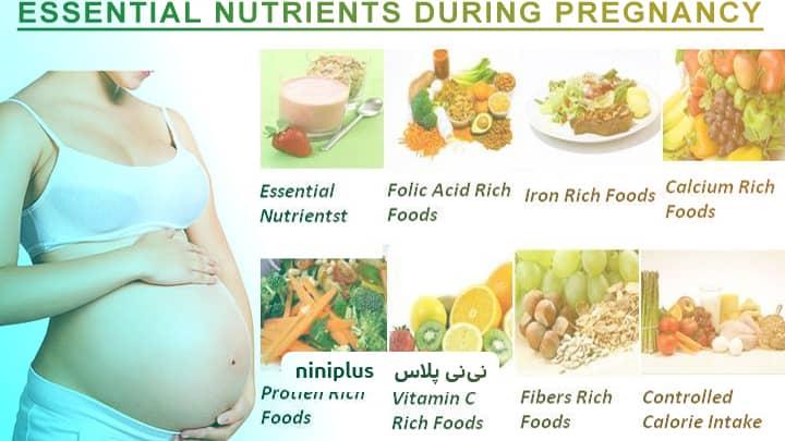 بهترین غذا برای زن باردار و جنین درون رحم چیست؟