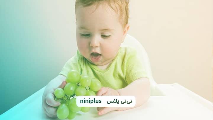از چند ماهگی می توانیم به نوزاد انگور بدهیم؟ فواید دادن انگور به نوزاد