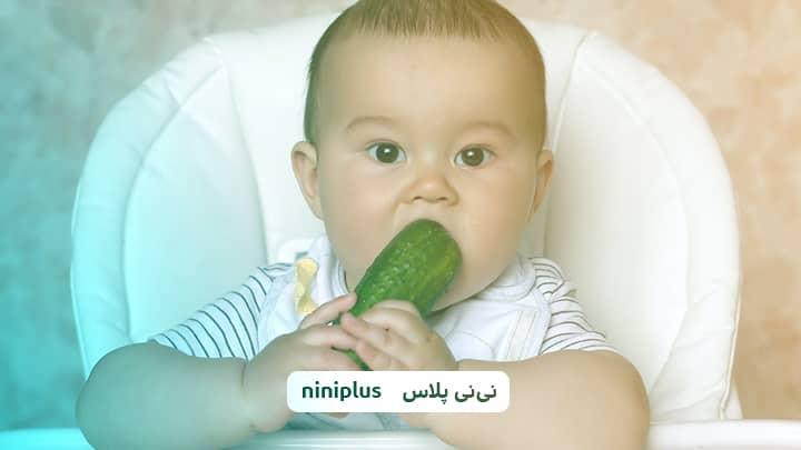 از چند ماهگی به نوزاد خیار بدهیم؟ فواید دادن خیار به نوزاد