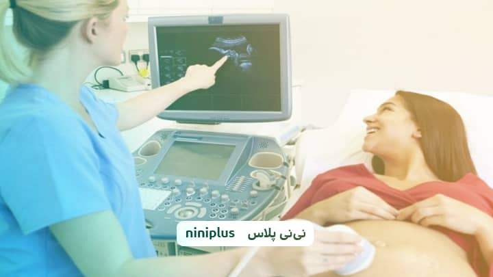 قلب جنین در چند هفتگی تشکیل میشود وقلب جنین چگونه رشد میکند؟