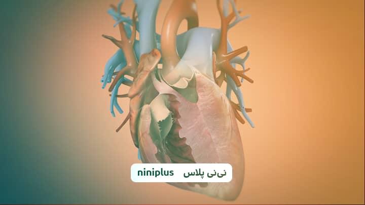 هیپوپلازی قلب چپ و علائم هیپوپلازی قلب چپ چیست؟