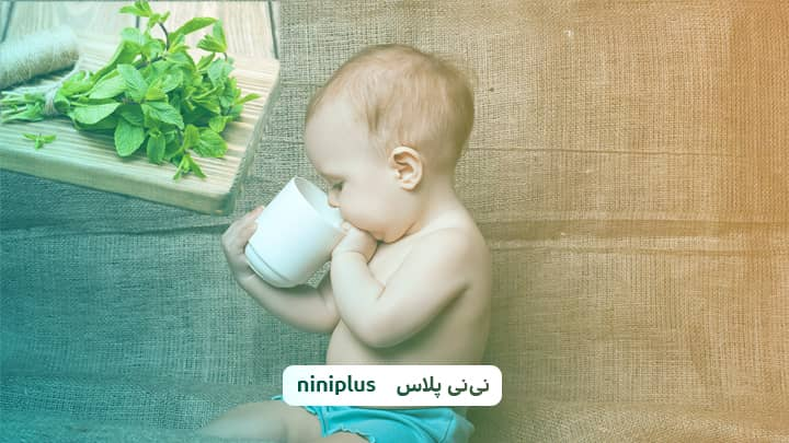 از چند ماهگی به نوزاد نعناع بدهیم؟ فواید دادن نعناع به نوزاد